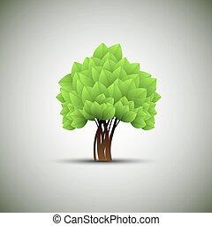 primavera, árvore, com, verde sai
