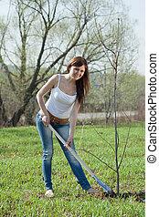 primavera, árvore, jardineiro, plantar