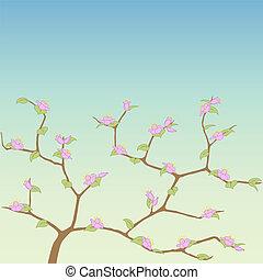 primavera, árvore.