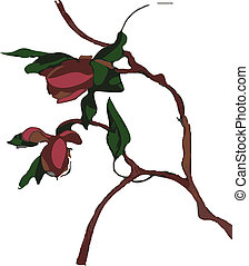 primavera, -, árvore, vetorial, flores, vermelho