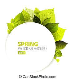 primavera, abstratos, floral, fundo