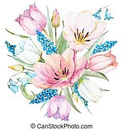 primavera, acquarello, vettore, fiori
