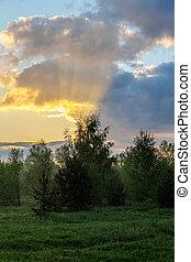 primavera, alba, paesaggio