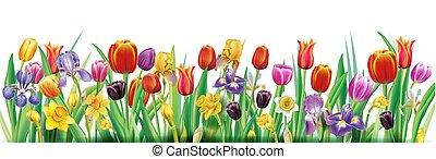 primavera, arranjo, flores, multicolor