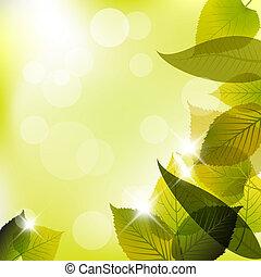 primavera, astratto, mette foglie, fondo