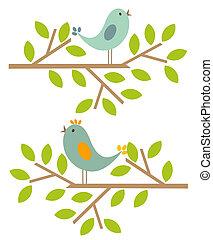 primavera, aves