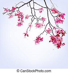 primavera, azzurramento, sakura, ramo, di, blots, fondo