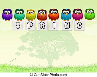primavera, búhos