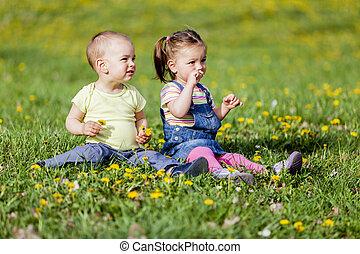 primavera, bambini, campo