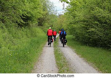 primavera, bicicletta, giri, foresta