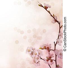 primavera, borda, Flores