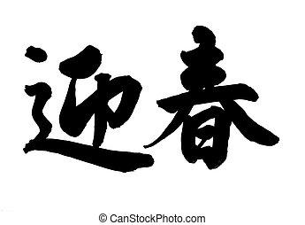 primavera, caligrafia, felicidade, chinês, má