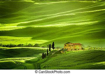 primavera, campos, y, praderas, en, italia