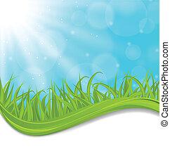 primavera, capim, natural, verde, cartão