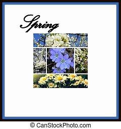 primavera, colagem