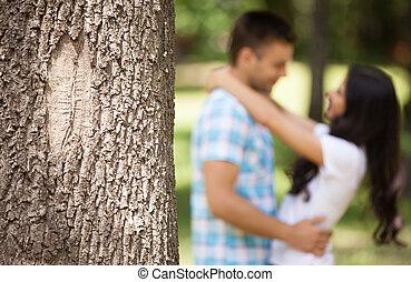 primavera, coppia, parco, giovane, abbracciare, hugging., amare