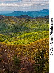 primavera, cores, em, a, appalachians, visto, de, blackrock,...