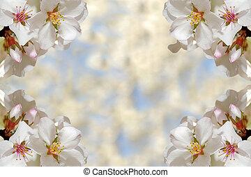 primavera, cornice
