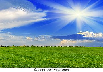 primavera, día soleado