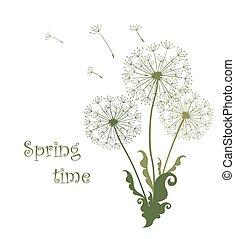 primavera, dandelions, cartão