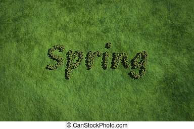 primavera, erba, albero, fondo, testo