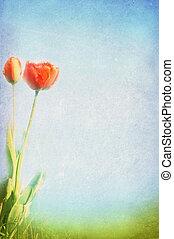 primavera, estate, fondo