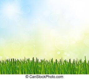 primavera, Estratto, fondo, natura
