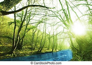 primavera, fiume