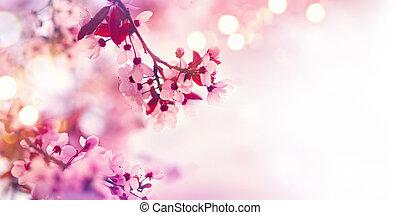 primavera, flor, borda, com, cor-de-rosa, florescer, árvore
