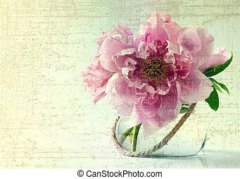 primavera, flores brancas, fundo, vaso