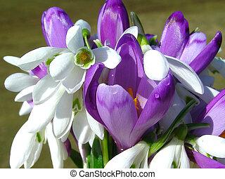 primavera, flores salvajes, ramo