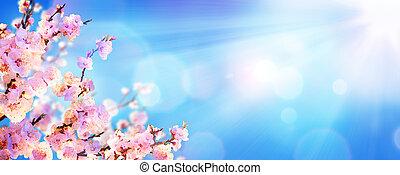primavera, florescer, -, amêndoa, flores, com, luz solar, em, a, céu