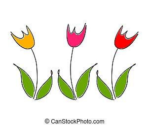primavera, flowers., três, coloridos, tulipa