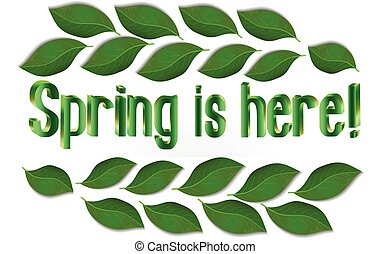 primavera, foglie, testo