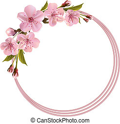 primavera, fondo, con, rosa, ciliegia, fiori