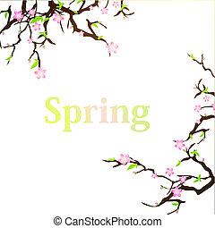 primavera, fondo