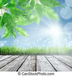 primavera, fondo, natura