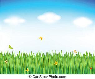primavera, fondo, vettore