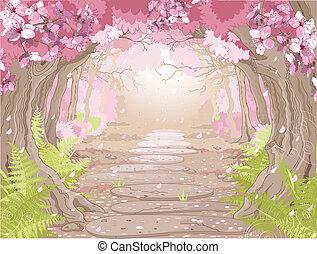 primavera, foresta, magia