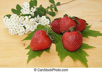 primavera, fresas, flores