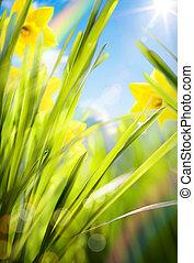 primavera, fundo, abstratos