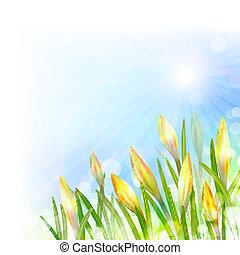 primavera, fundo, com, amarela, flowers.