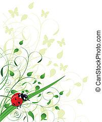 primavera, fundo, ladybug