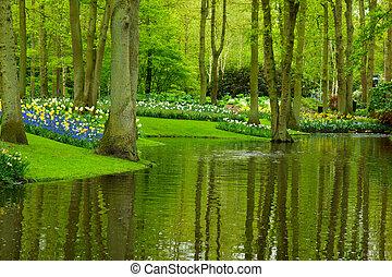 primavera, giardino, keukenhof