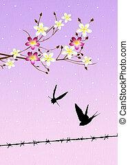 primavera, golondrinas