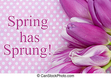 primavera, ha, saltato, augurio