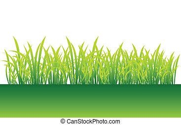 primavera, hierba verde, para, su, diseño