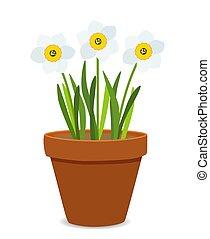 primavera, ilustração, vetorial, fundo, narcissus, flores