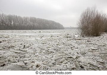 primavera, inundação, gelo, floes, ligado, a, rio