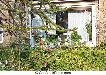 primavera, jardín, cerca, el, house., países bajos